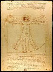 Referate Anatomie