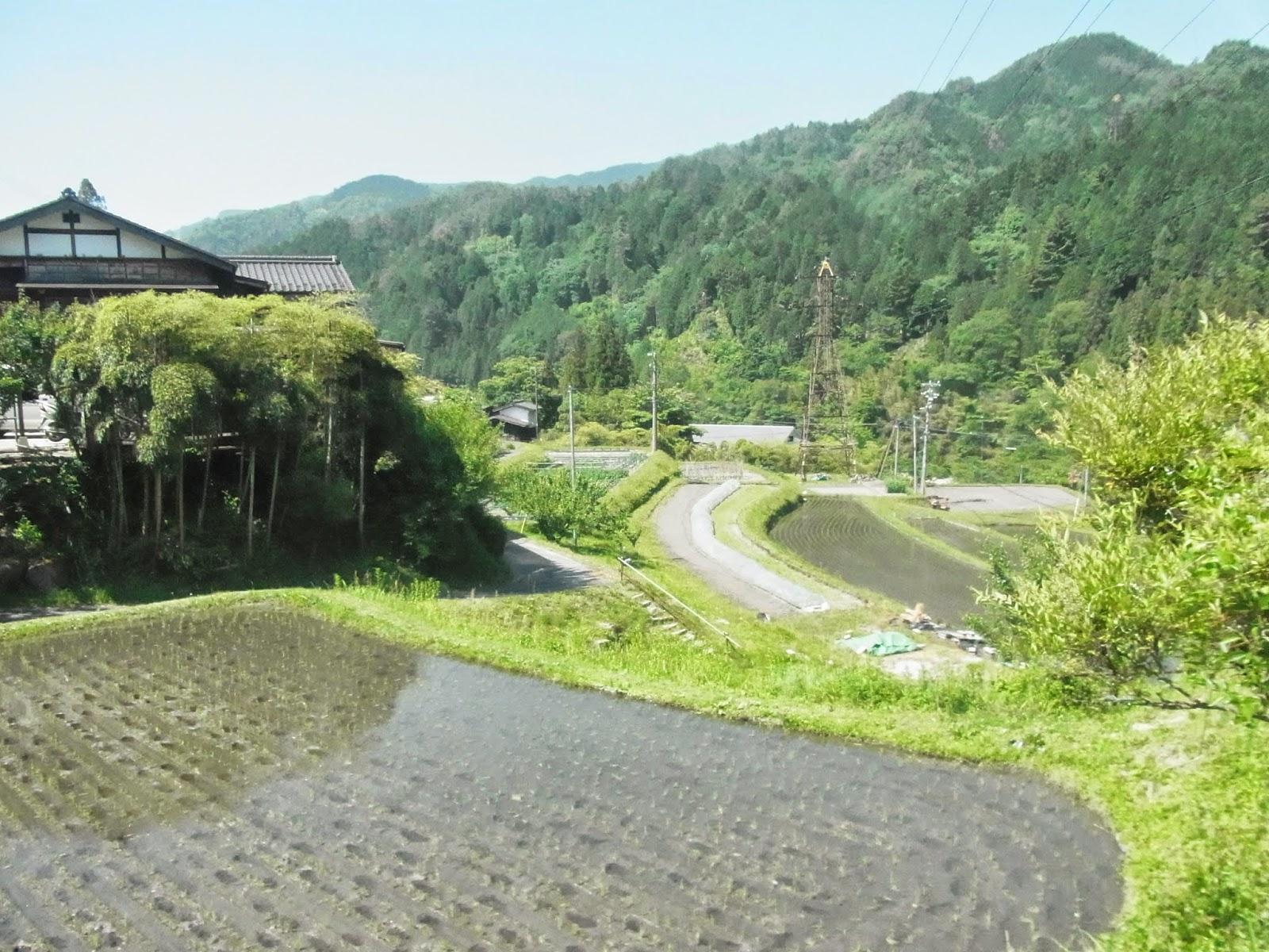 Splendor in the Grass: 南木曽 ...