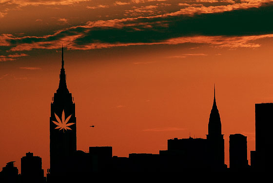 Maconha medicinal começa a ser vendida hoje em Nova York