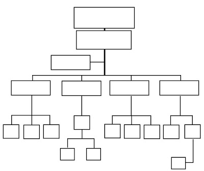 organigrama verticales