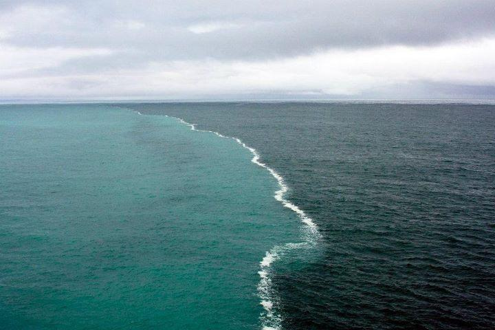 gulf of alaska has two oceans that meet but do not mix these
