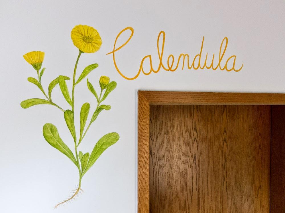 Wandmalerei Calendula Acryl auf Putz