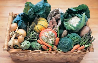 vlaknasta hrana za bolju probavu