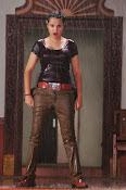 Nisha Kothari latest photos gallery-thumbnail-8
