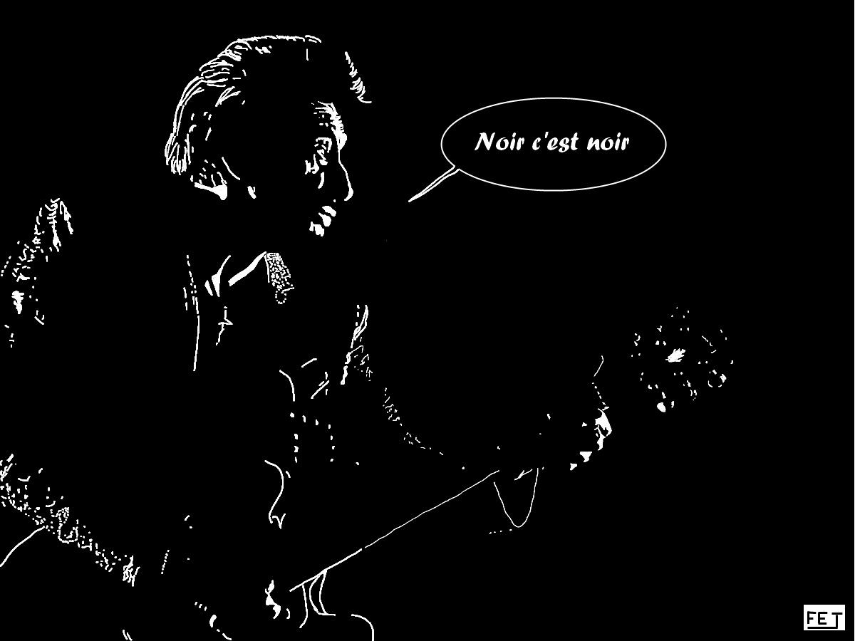 Johnny Hallyday: Noir c'est noir