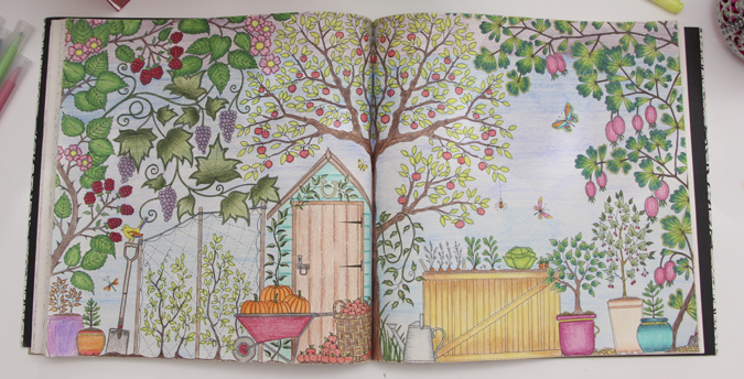 """ideias para pintar livro jardim secreto : ideias para pintar livro jardim secreto: La Vida Girls: """"Jardim Secreto e Floresta Encantada"""" Dicas de livros"""