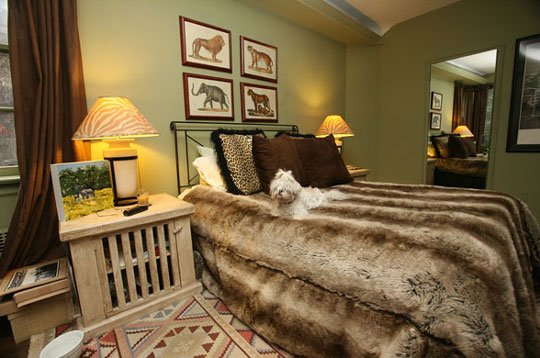 lifestyle in blog animal print interior warm and cosy