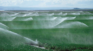 Entre julho e novembro de 2013, os produtores rurais já contrataram R$5,18 bilhões.