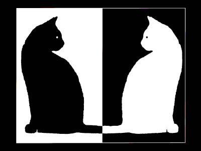 hitam putih Apakah Hitam dan Putih adalah Warna?