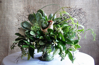 succulents, fan coral, capiz shell, spanish moss centerpiece, Isha Foss Events, Virginia Beach