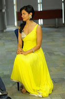 Actress Pooja Kumar in yellow dress