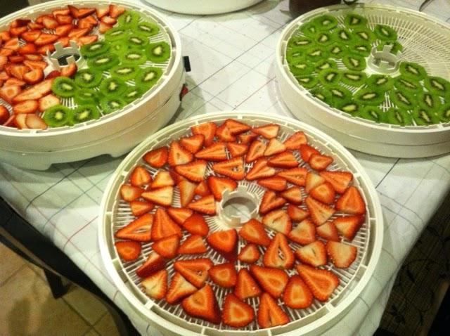 Dehydrating recipes canning homemade sliced strawberries and kiwi fruit nesco 700 watt 8 hours 135 degrees forumfinder Choice Image