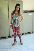 Neha deshpande Photos at Dil Diwana press meet-thumbnail-10