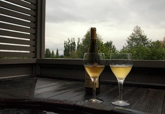 Relaxing in the hot tub with a bottle of wine - Martinborough