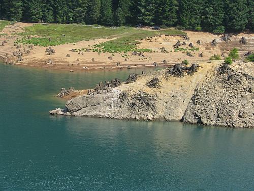 fall creek cougar women 1 draft environmental assessment downstream fish enhancement for juvenile salmonids at hills creek, fall creek, and cougar dams 2013-2020 november 2013.