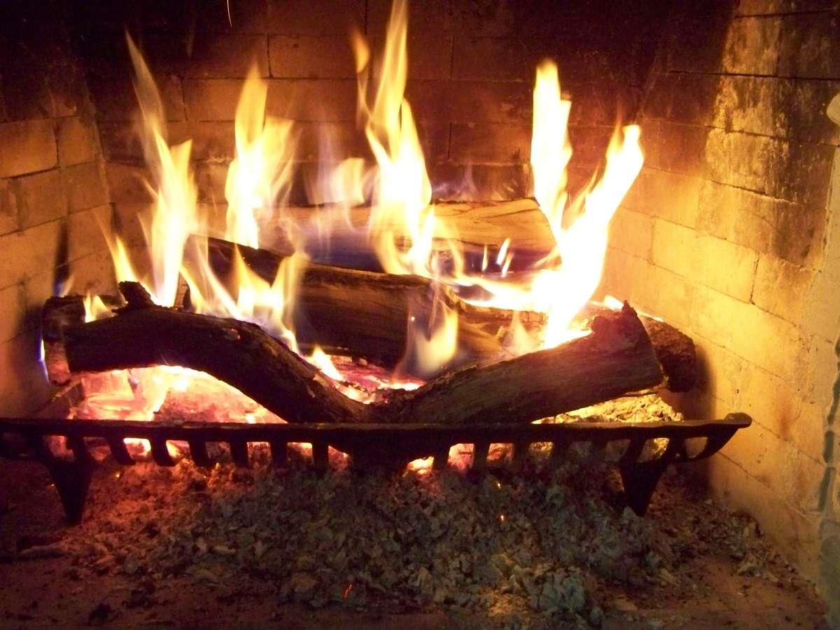Buona vita news i due ceppi di legno for Fuoco finto per camino