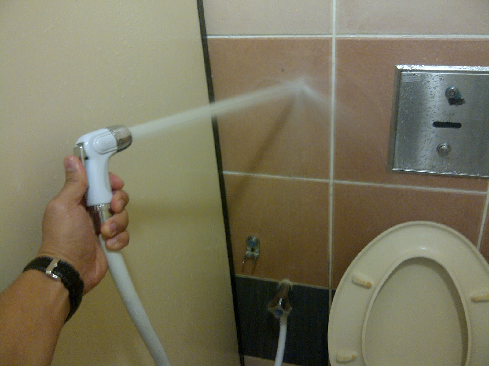 orang aku pun sibuk nak jugak nozzle spray on a hose in the loo fancy but
