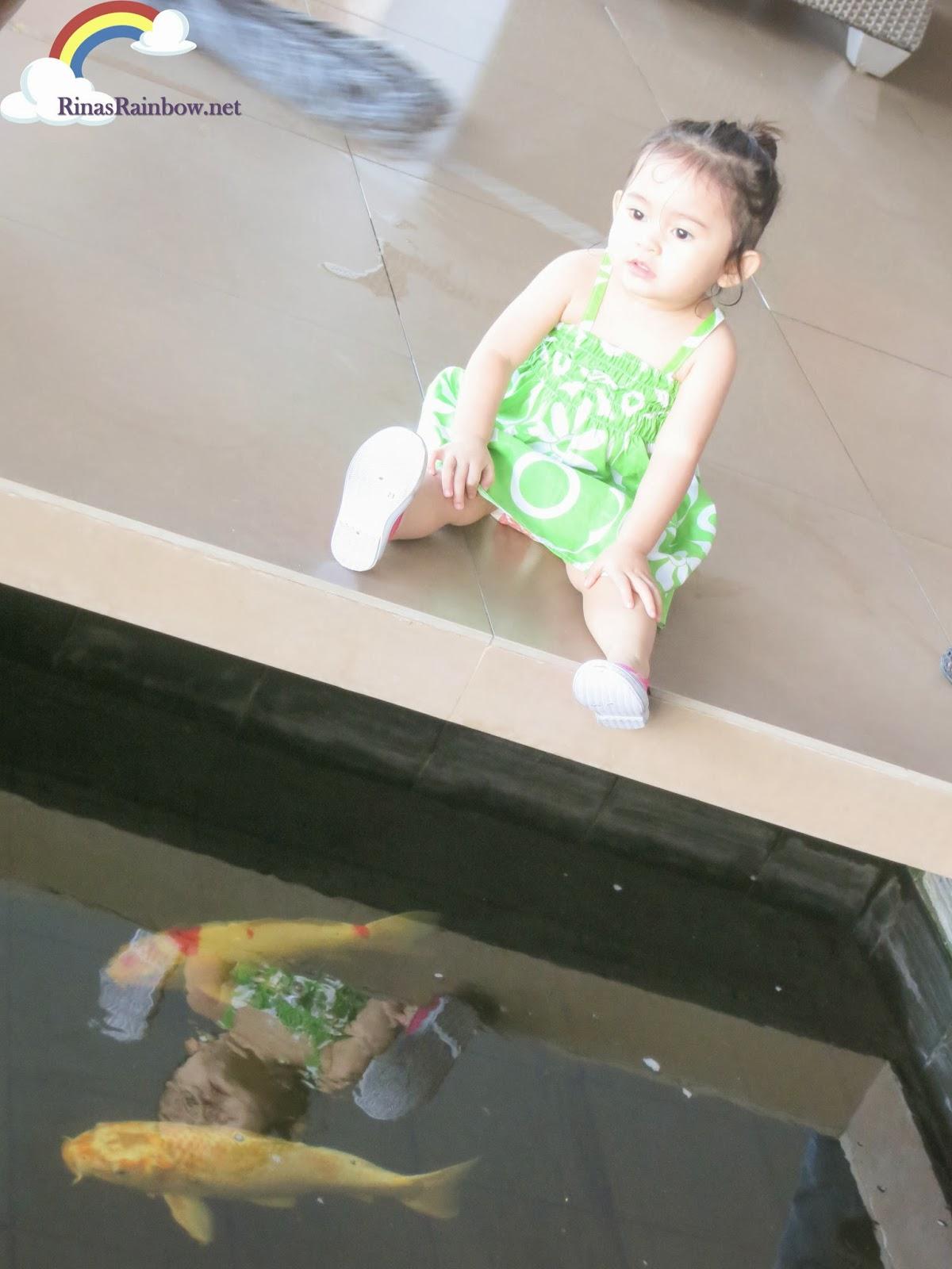 bellevue manila hotel koi fish pond
