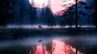 HD_Nature_Wallpaper_beauty_of_look_good