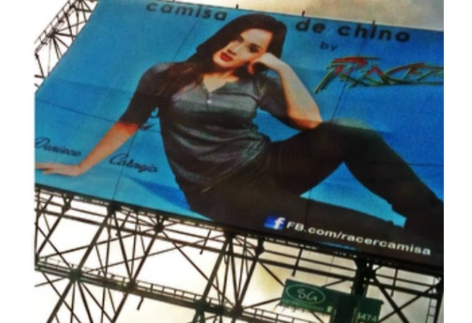Rape victim Deniece Cornejo billboard