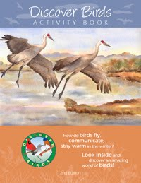 DISCOVER BIRDS ACTIVITY BOOK!