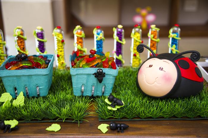 ideias de festa infantil jardim encantado:Festa Jardim Encantado Colorido – Dicas pra Mamãe
