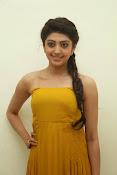 Pranitha latest dazzling pics-thumbnail-11
