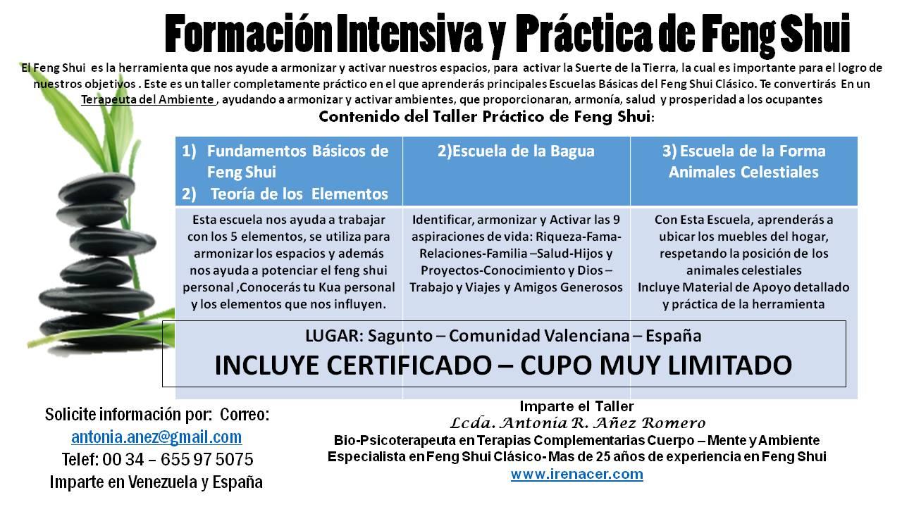 Formaciòn Intensiva y  Práctica Feng Shui - Aprende 3 Escuela Feng Shui