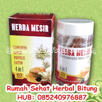 HERBA MESIR GARLIC PLUS