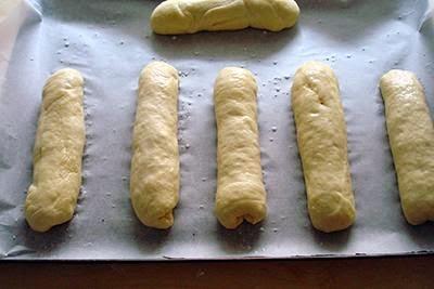 Panini per hot dog 18