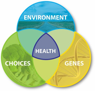 bio 36 environmental science Ms in tropical conservation biology and environmental science  internship  track = 36 credits (14 core + 12 electives + 10 internship.