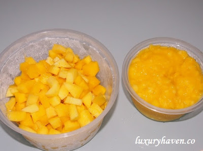 mango recipes appetizer