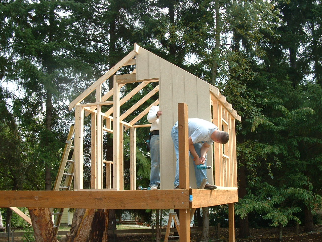 Backyard Treehouse Builders : of Tree Houses and Play Houses From Around The World, Plans And Build