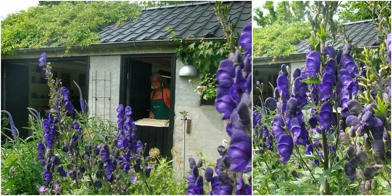 Haven i Hune, juli