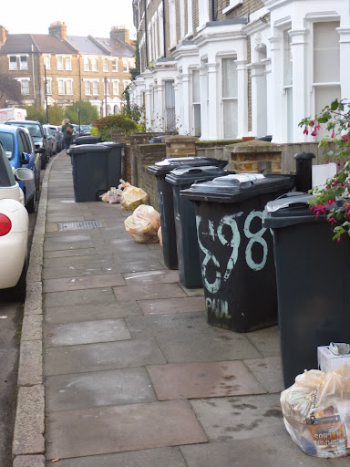 Photo of bins left out for rubbish collection