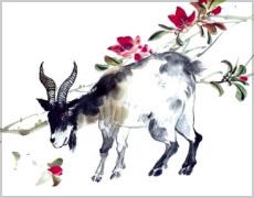 Horoscope hebdomadaire Verseau gratuit, votre Horoscope de la semaine ...