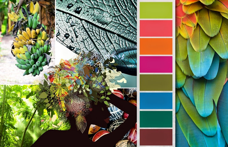 Fashion vignette trends colorworld csi dystar for Tropical house color schemes