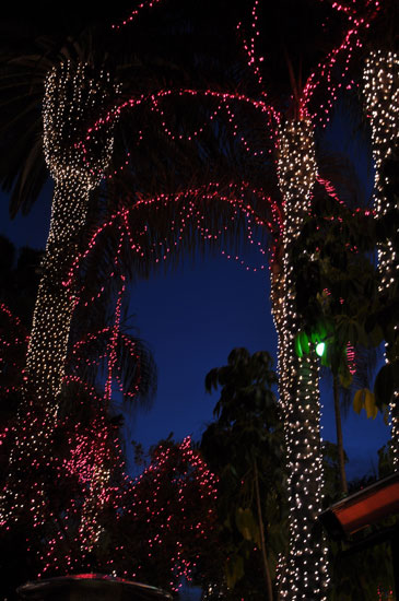 Mission Inn Festival of Lights by Lady by Choice