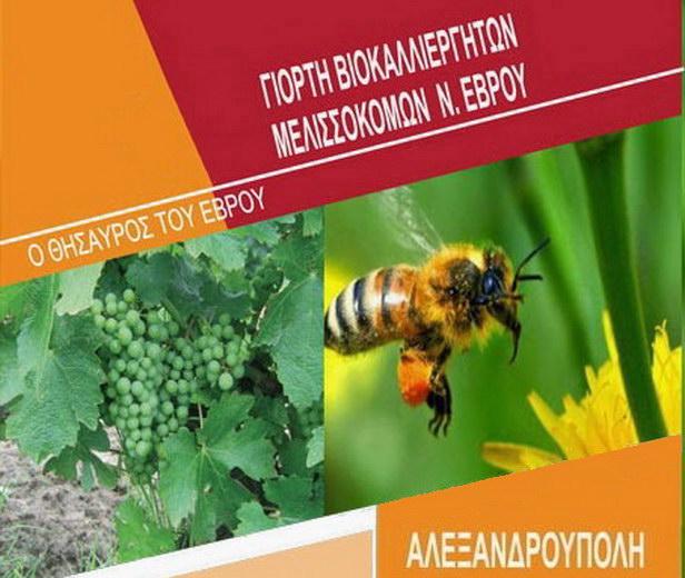 Γιορτή Βιοκαλλιεργητών και Μελισσοκόμων στην Πλατεία του Φάρου Αλεξανδρούπολης