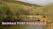 Mawgan Porth Pools-Lake