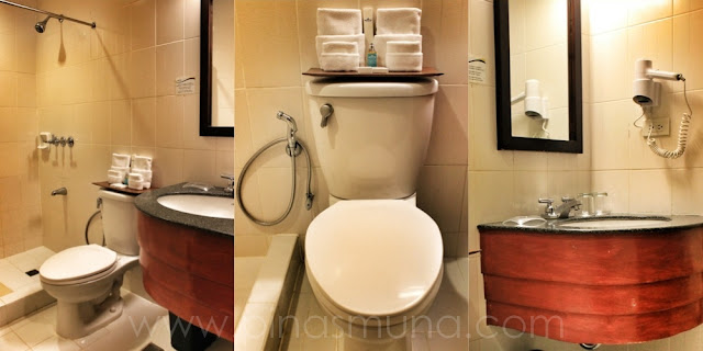 Microtel Cananatuan Hotel Toilet and Shower
