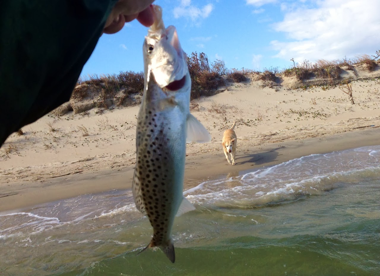 Top water charters fishing reports and news beaufort for Fishing in the wind