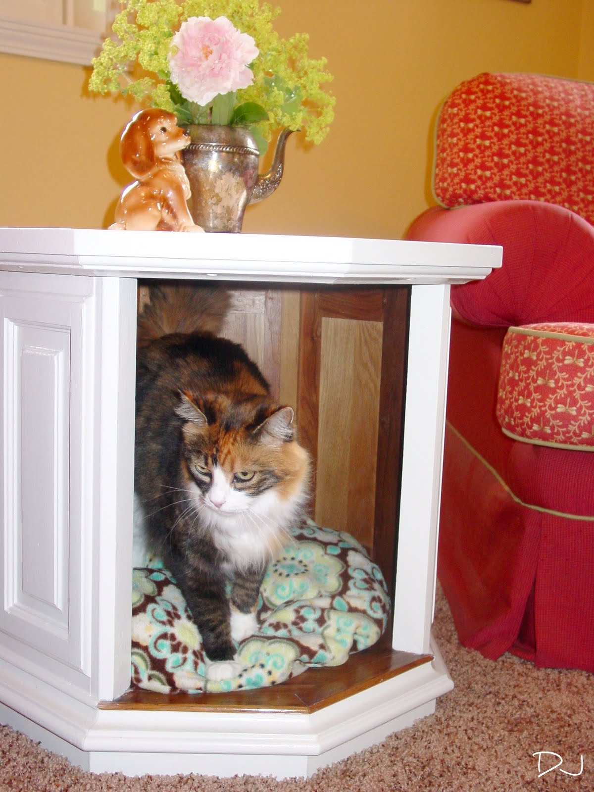 Calico really likes this idea! - Spittin Toad: Coffee Table / Pet Bed