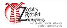 PhotoArt by Zoolatry