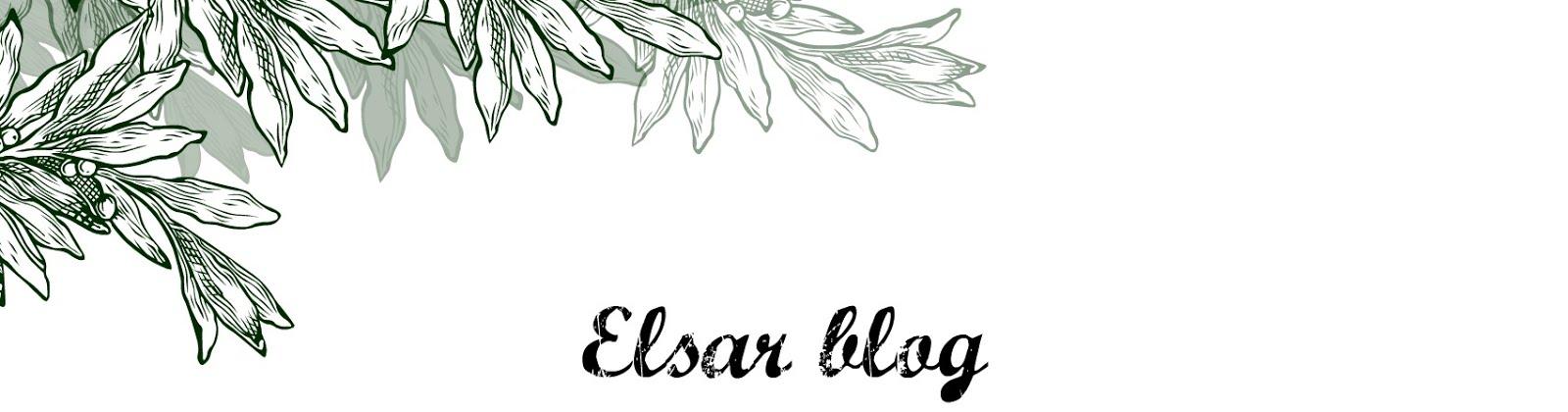 ElsaRblog