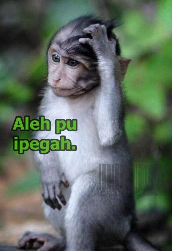 Foto Komentar Status Facebook Versi Bahasa Aceh Ada