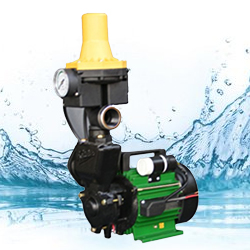 Kirloskar Star Galaxy Monoblock Pump (0.5HP) With Auto Controller Online, India - Pumpkart.com
