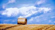 Nature HD Wallpaper (nature hd wallpaper )