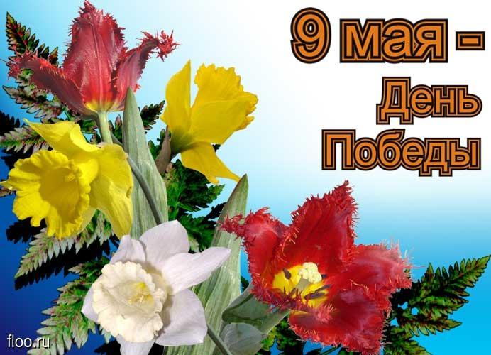 поздравление с 23 февраля в картинках стихах