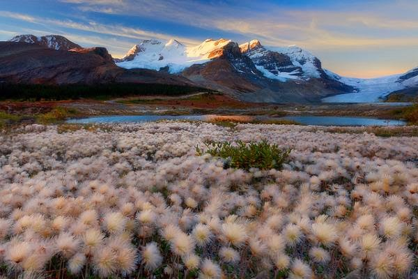 Cute Landscape Photography by Kevin McNeal
